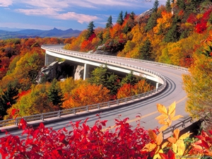road-and-colorful-autumn